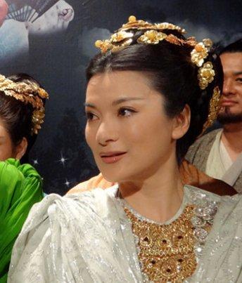 阎青妤因为出演电视剧新天龙八部中的白刀凤所以
